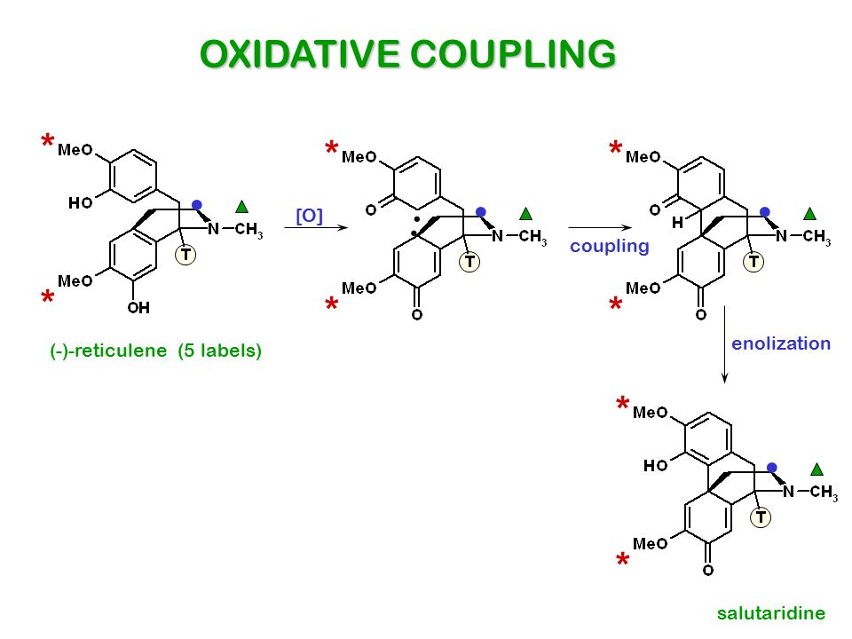 . . . . OXIDATIVE COUPLING * * * . . * * * * * [O] coupling